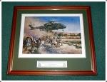 Afghan Merlin5